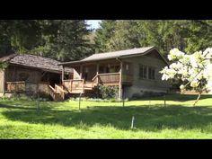 Leaping Lamb Farm Stay Near Corvallis, Oregon
