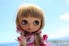 まさかの飛行機キャンセル! : セドナ ~癒しの街~mini-pe 女子カメラ