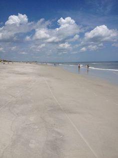 Omni Amelia Island Plantation Resort (FL) - Resort Reviews - TripAdvisor