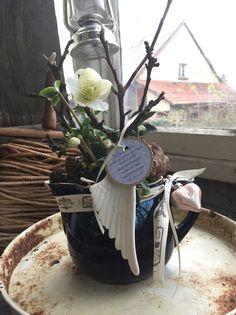 Christrose im Krug - Winterdekoration von FRIJDA im Garten - Aus einer Idee wurde Leidenschaft auf DaWanda.com