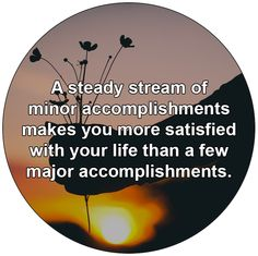 A steady stream of minor accomplishments makes you more satisfied with your life than a few major accomplishments.