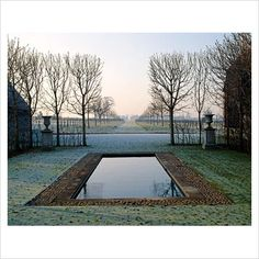 GAP Photos - Garden & Plant Picture Library - The main west facing axis with the rectangular swimming pool framed by clipped Aesculus hippocastanum - horse chestnut trees - David Hicks' garden - GAP Photos - Specialising in horticultural photography