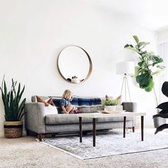 White living room wall, gray couch, area rug, potted plants, rectangular coffee table