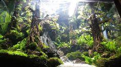 underwater waterfalls ! aquascaping