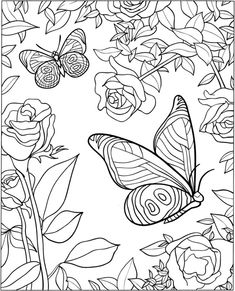 Welcome to Dover Publications 3-D Coloring Book - Butterfly Designs