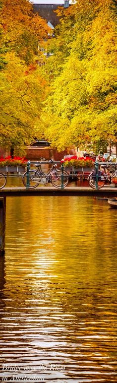 Autunno in Amsterdam - Netherlands Places To Travel, Places To See, Beautiful World, Beautiful Places, Image Nature, Autumn Scenery, Mellow Yellow, Montenegro, The Good Place