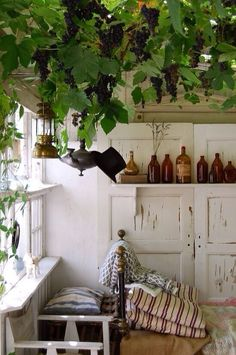 melting Ivy and Victorian brown bottles placed against peeling paint, beautiful.