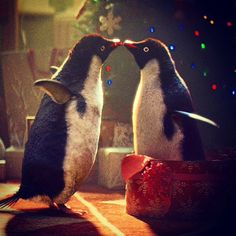 I'm soooo in love with the John Lewis advert with Monty the Penguin ❤️ Christmas has officially begun!