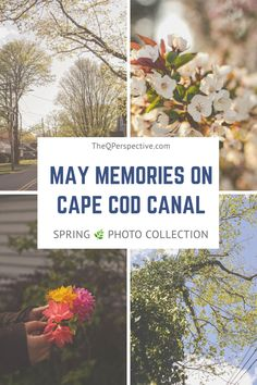 I spent two weeks down in Cape Cod, MA. Here is a set of photos during that time! Fun Outdoor Activities, Outdoor Fun, Cape Cod Bay, Buzzards Bay, Summer Eyes, Fall River, Spring Photos, Beautiful Sunset, Kayaking