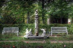 Ostdeutscher Rosengarten bei Forst.