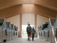 Front wall Bremen #stables #pferdeboxen #roewer rueb
