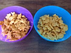 Bunnies or Goldfish?  My Choice is Not a Criticism of Yours! - This is good to keep in mind whether one has children or not.