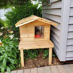 Outdoor Cat House Diy, Outdoor Cat Tree, Outdoor Cat Shelter, Outside Cat Shelter, Heated Outdoor Cat House, Feral Cat Shelter, Feral Cat House, Feral Cats, Cat Shelters