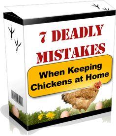 Chicken Coop Designs, Chicken Coop Plans, Hen House, Build Chicken Coop, Chicken House
