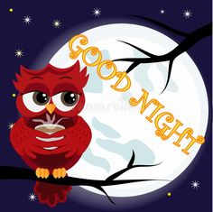 Cute cartoon owl coquettish red with a cup of coffee sitting dormant on the crescent against the night sky with stars. Cute cartoon owl coquettish red with a cup royalty free illustration Night Sky Stars, Night Skies, Owl Cartoon, Cute Cartoon, Owl Kids, Night Owl, Star Sky, Free Illustrations, Tree Branches
