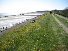 Voorjaar-op-Vlieland - een heerlijke wandeling over de dijk!
