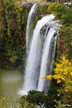 Whangarei Falls is known as the most photogenic waterfall in all of New Zealand.  Located just 5km from the city of Whangarei, which is the northernmost city in New Zealand, the falls is a pleasant place to enjoy a picnic or a walk amidst the native bush.
