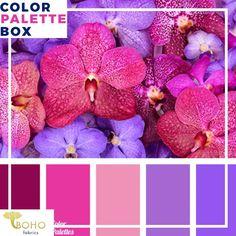 Scheme Color, Color Schemes Colour Palettes, Colour Pallette, Color Combos, Color Balance, Design Seeds, Colour Board, Color Swatches, Color Theory