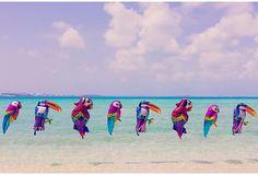 Gray Malin, Bermuda Tropical Birds on OneKingsLane.com