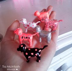 PINK Xtra Mini Pups!! Shall fisheries they're the cutest things fricken ever