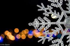 Snowflake and bokeh