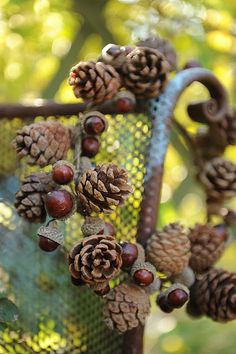 Beautiful autumn wreath ~ it looks as if they glued chstnuts into the acorn caps!