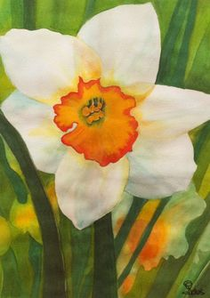 daffodil, watercolor art prints, flower painting, white daffodil. $15.00 USD, via Etsy.