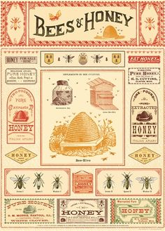 This fantastic poster features all the elements involved with honey production. Vintage advertisements, bee description and hives. Each sheet of wrapping paper Cheap Poster Prints, Art Prints, Honey Wrap, Honey Bee Hives, Honey Bees, Raw Honey, Pattern Texture, Honey Label, Vintage Bee