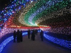Tunnel of Lights ~ Sato Flower Garden. Kuwana, Mie Prefecture, Japan. This event goes from November to mid March.