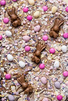 This Easter Chocolate Bark Recipe Is the Most Addictive Treat You Will Ever Make! via Brit Co This Easter Chocolate Bark Recipe Is the Most Addictive Treat You Will Ever Make! via Brit Co Easter Candy, Hoppy Easter, Easter Treats, Easter Food, Easter Baking Ideas, Easter Cookies, Easter Eggs, 13 Desserts, Desserts Ostern