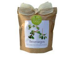 Grow bag beldroegas Life in a bag