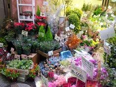 니시키시장꽃가게