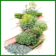 Aromatische Kräuter, können Sie mit vielen Pflanzen kombinieren.  Kräuter können Sie mit vielen Blumen – und Gemüsearten kombinieren. Die klassische Buchseinfassung der Beete und Wege aus roten Klinkersteinen verleihen Ihrer Kräuterecke sehr schnell den Charme und Charakter eines Bauerngartens.  http://www.gartenschlumpf.de/aromatische-kraeuter/