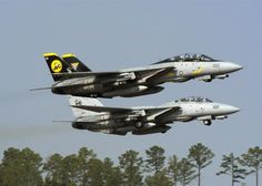 Grumman F-14 Tomcat fighter jets