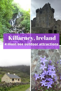 It's easy to fall in love with Killarney, Ireland. Don't miss these four outdoor activities while you're there - Muckross House, Ross Caste, Gap of Dunloe, and Torc Mountain. Breathtaking!