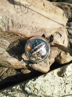 Real Beetle Statement Ring. #real #jewel #weevil #beetle #insect #terrarium #statement #ring #fashion #wear #jewelry #design #unique #ooak #shop #gift #ideas #boho #bohemian #gypsy #goddess #semi #precious #gem #gemstones #peridot #bismuth #labradorite #petrified #wood #quartz #crystals