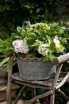 .loooooove using galvanized metal tubs and urns in a green/white garden!!!!! these are fab white hydrangeas in a galvanized tub!!!!!
