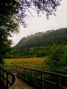 Ireland, in the Wicklow Mts., Glendalough