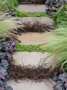Filling Gaps Many groundcover plants can be used to add interest and color to the spaces between patio slabs or steps where weeds may otherwise grow. Many of these plants are tough enough to withstand some light footfall, such as chamomile and thyme.