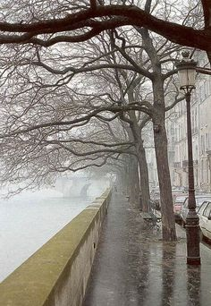 Ile St Louis on a rainy day - Paris