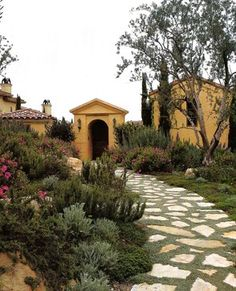 groundcover Curb Appeal Landscaping Pictures Design Ideas, Pictures, Remodel, and Decor - page 43
