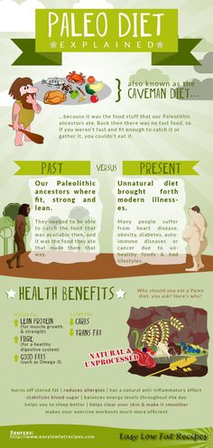Paleo Diet Explained  Infographic