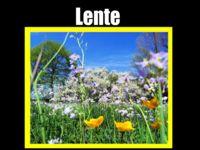 123 Lesidee - gr3/4 M Lente