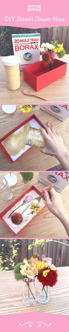 20 Mule Team Borax is great for preserving flowers. Check out this awesome DIY project to create beautiful Forever Flower vases with 20 Mule Team Borax! Diy And Crafts, Crafts For Kids, Arts And Crafts, Flower Vases, Flower Arrangements, How To Preserve Flowers, Preserving Flowers, How To Dry Flowers, Craft Projects