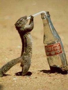 Nothing like a Coke!!