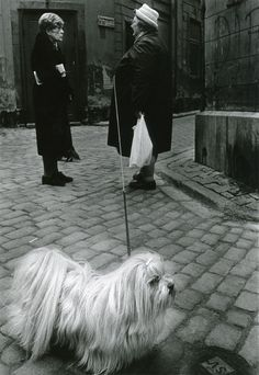 Two women and a white Lhasa Apso in Gamla Stan, The Old Town Stockholm