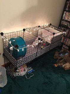 Pet Hedgehog... My diy hedgehog cage :) I'm so proud of myself!!
