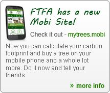 Calculate your carbon footprint and support the lungs of our planet