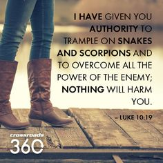 I Have Given You Authority To Trample On Snakes. And Scorpions And To Overcome All The Power of the Enemy; Nothing Will Harm You (Luke 10:19)