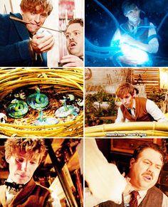 Fantastic Beasts - newt 'mum' scamander